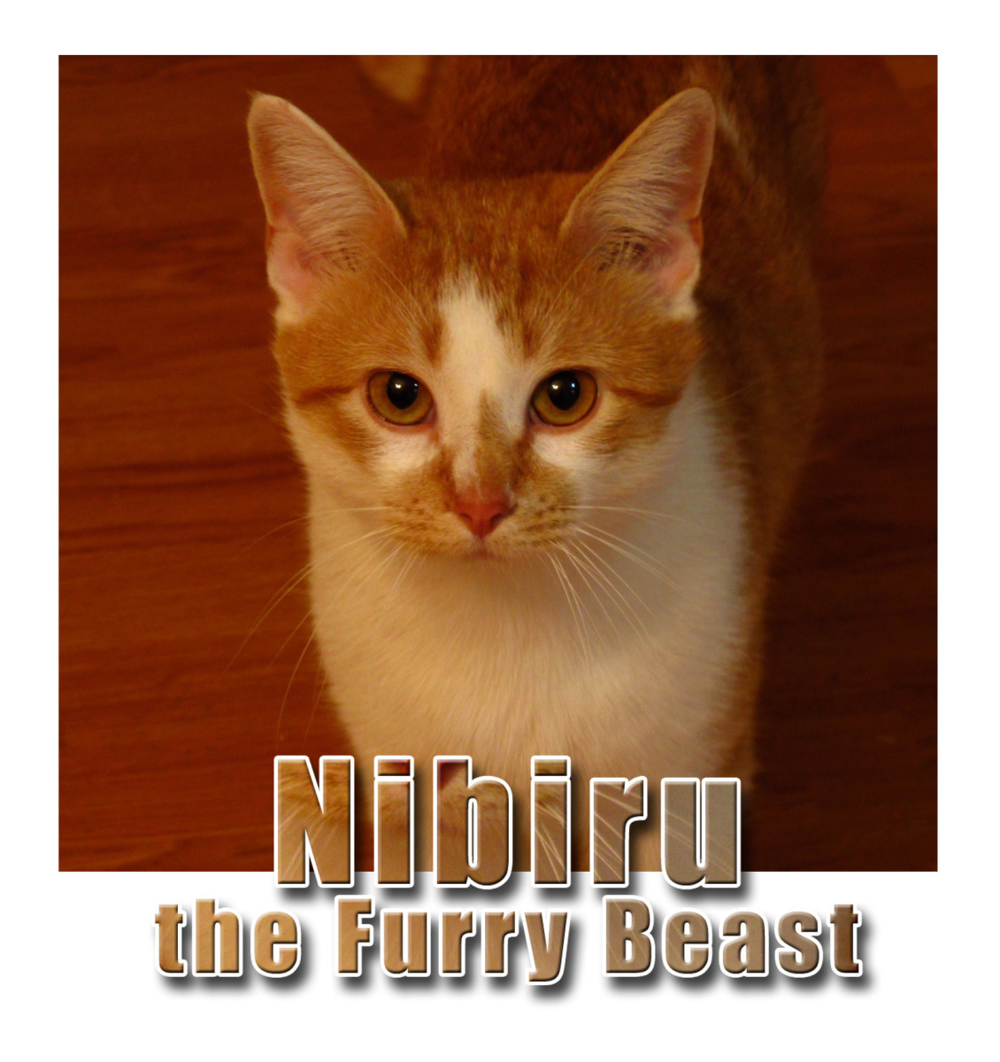 Nibiru is a furry beast and also the destroyer of worlds.