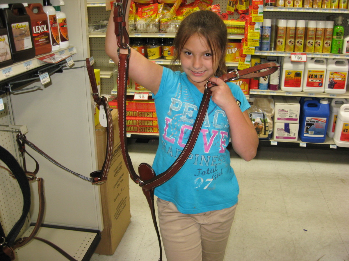 Lexi's pony saddle matches her other horse tack.