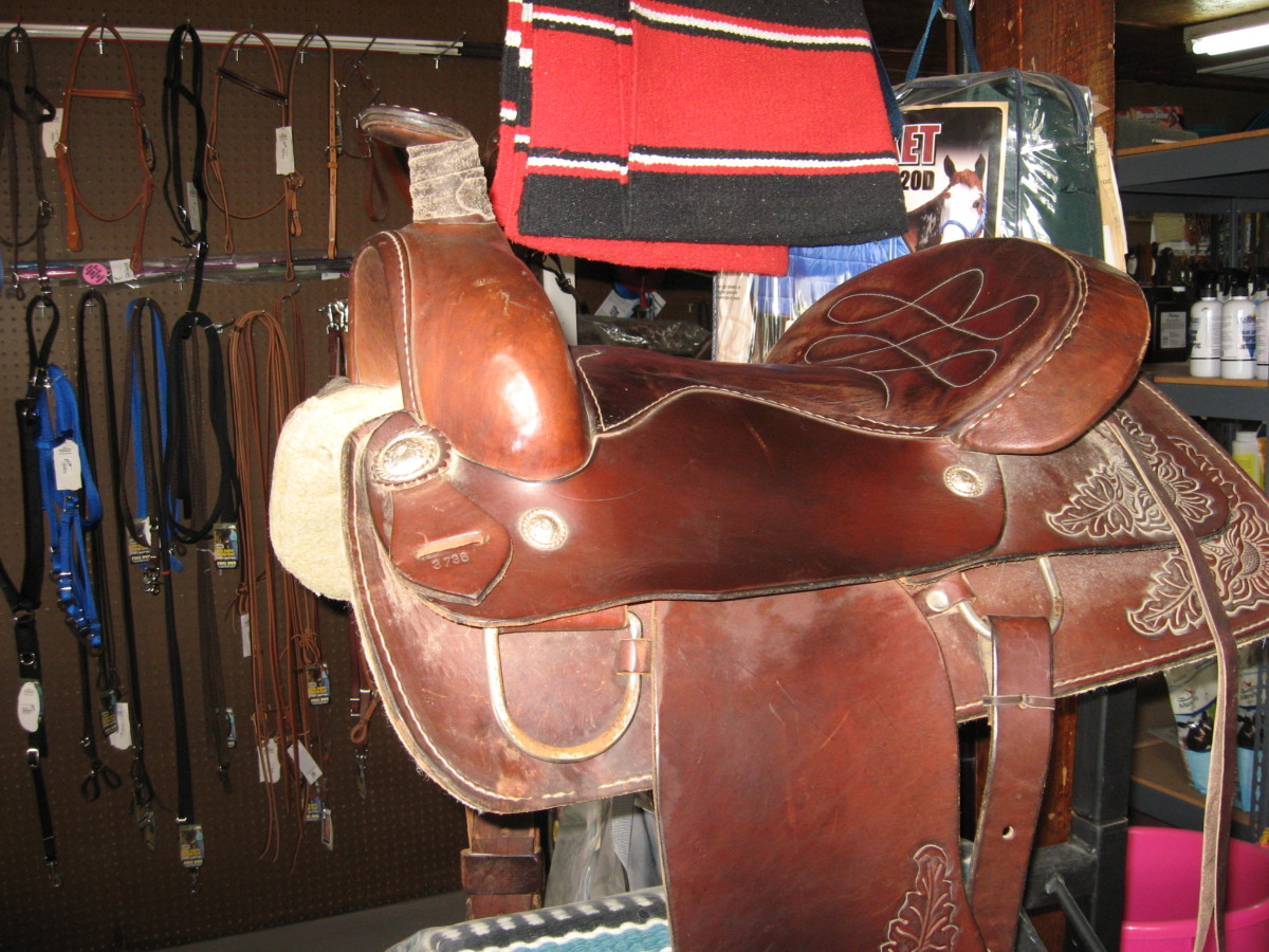 Horse Tack - Kids Saddles and Youth Saddles