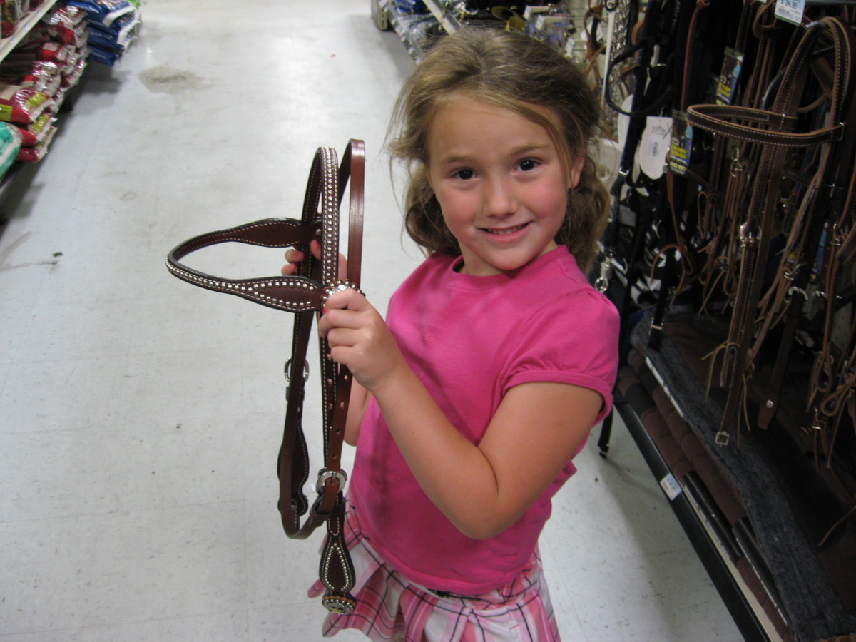 Audrie is checking out some western tack.