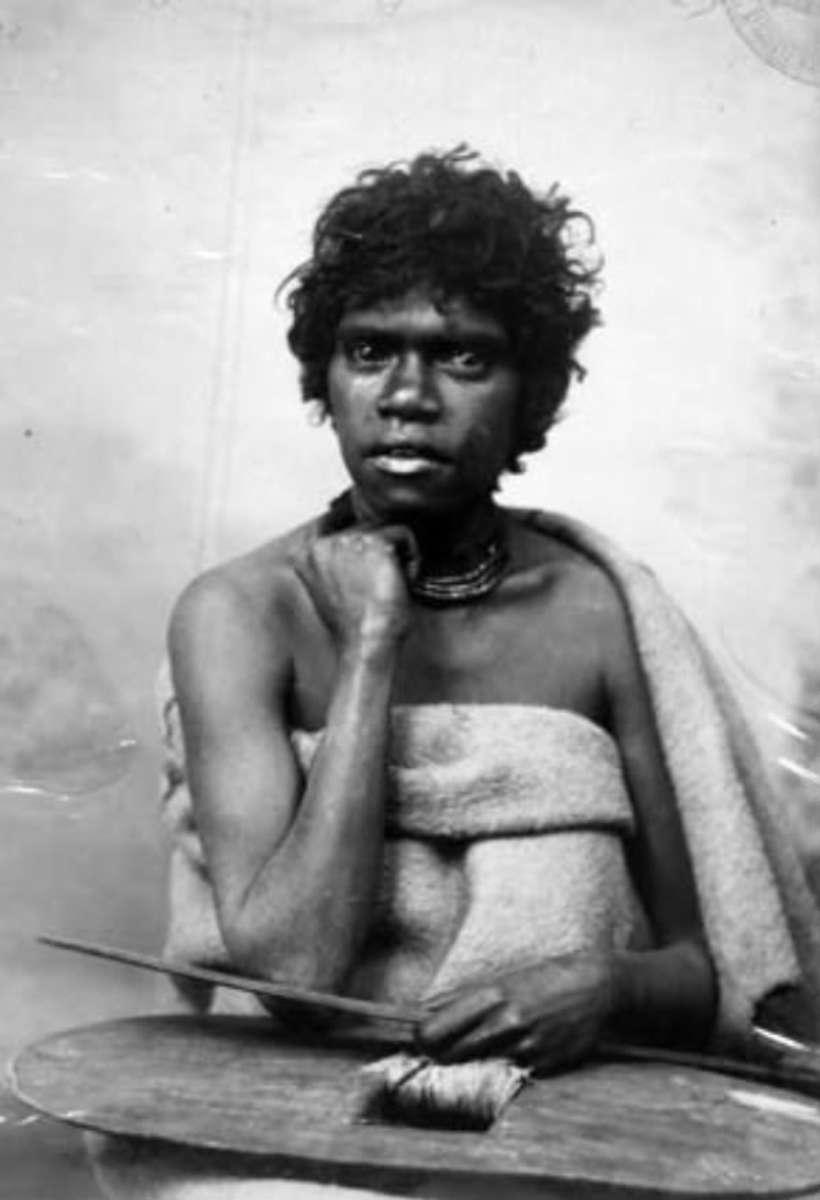 Native Tasmanian in 1893