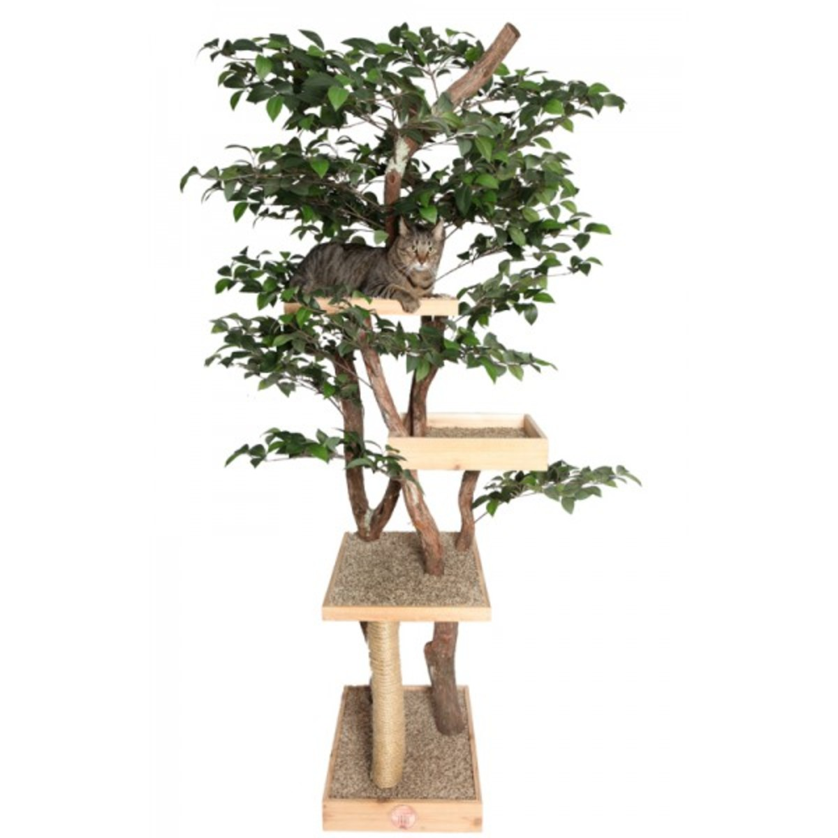 Cat Tree with leaves and branches