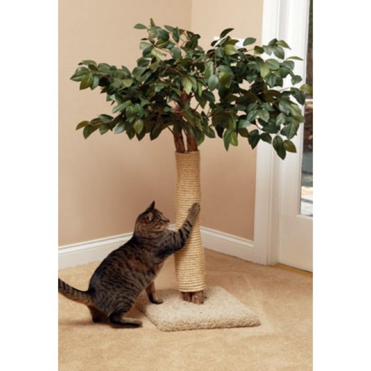 Natural Cat Tree Scratcher