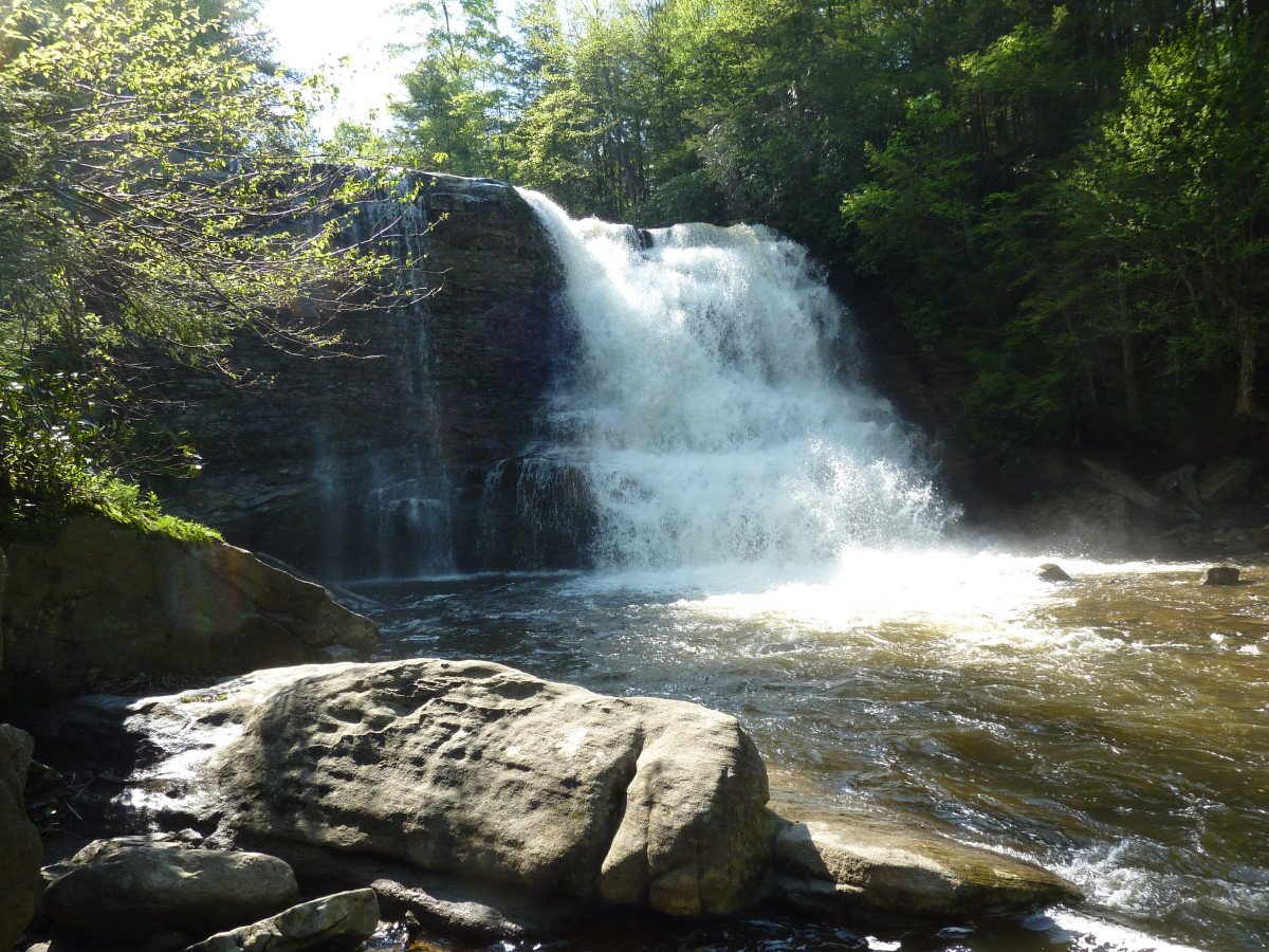 Muddy Creek Falls: the pinnacle of life before it crashes back to earth