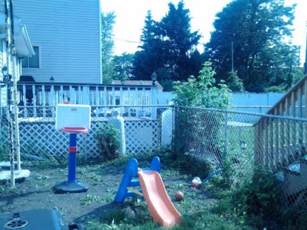 Backyard in South Troy NY