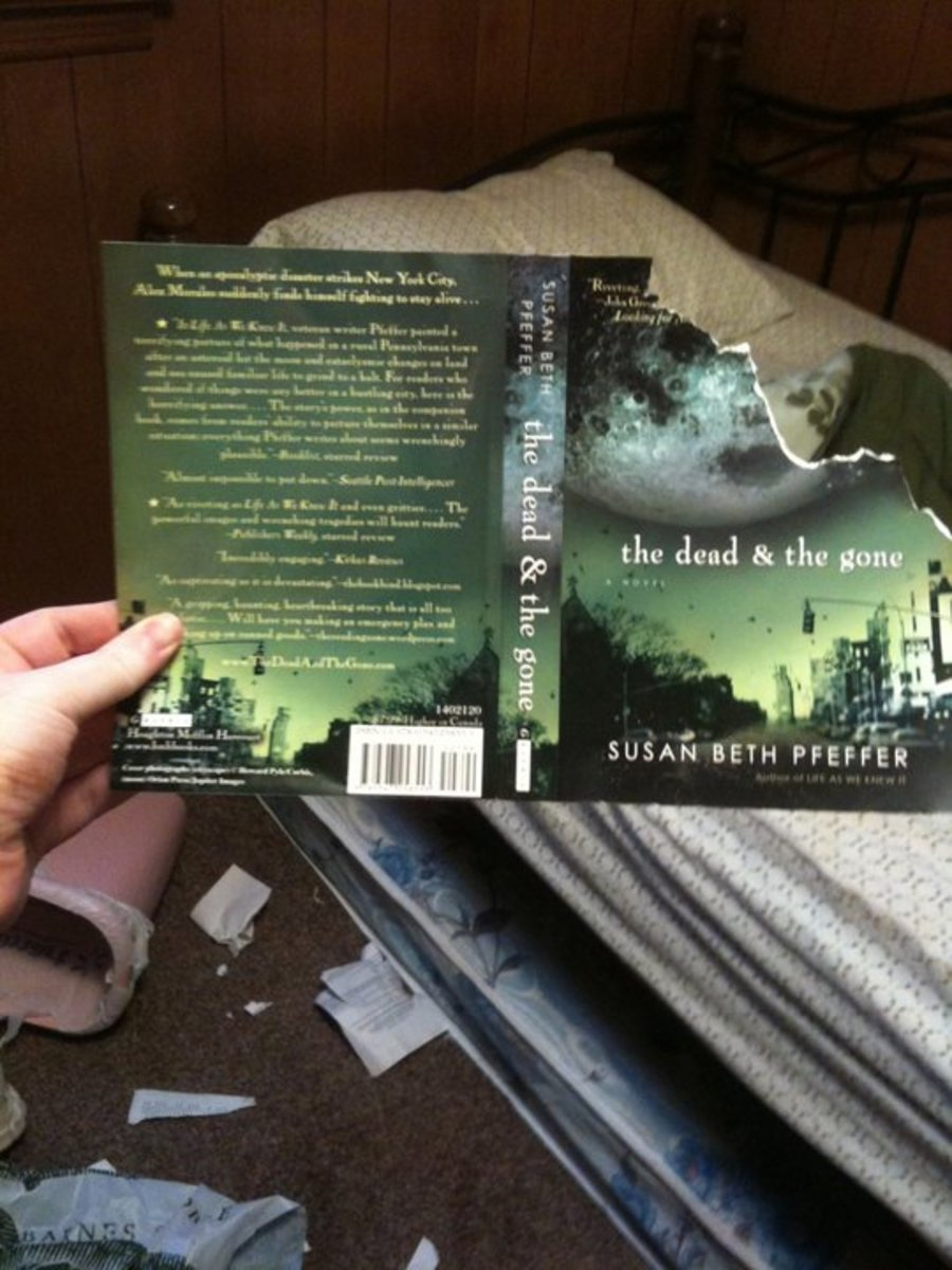 My book that Tucker destroyed when he was a puppy. :(