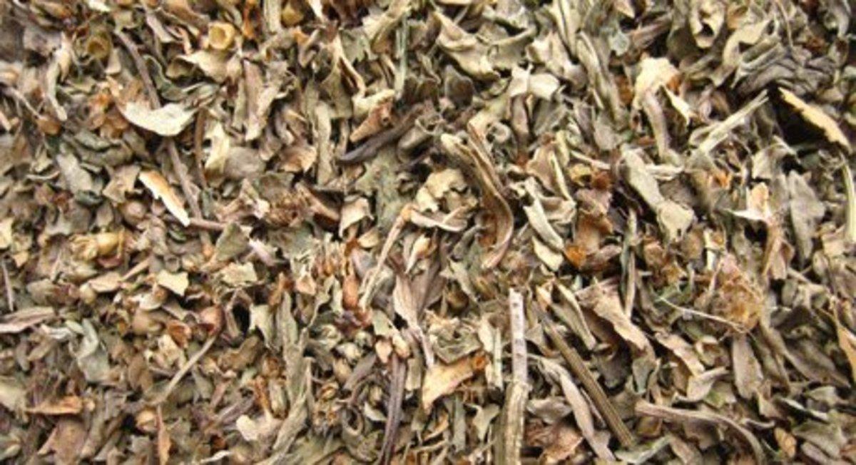 Plantain leaf-cut