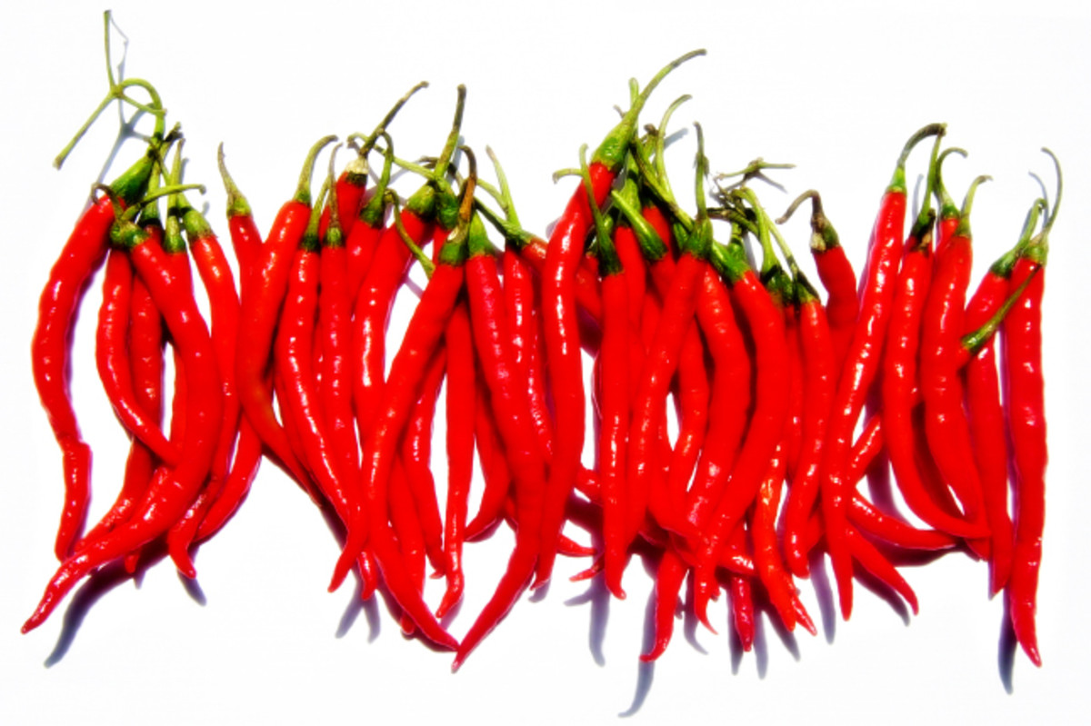 Chilli and other spices can heat your body in winter