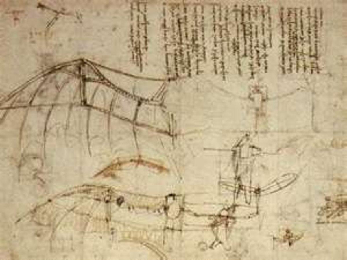 Leonardo's Bat Wings Glider Design