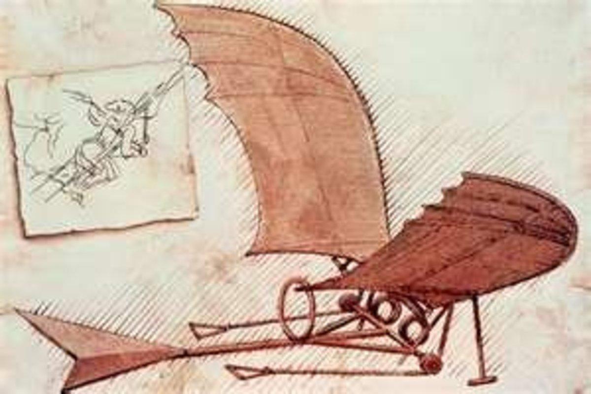 Bat Wings Glider Design