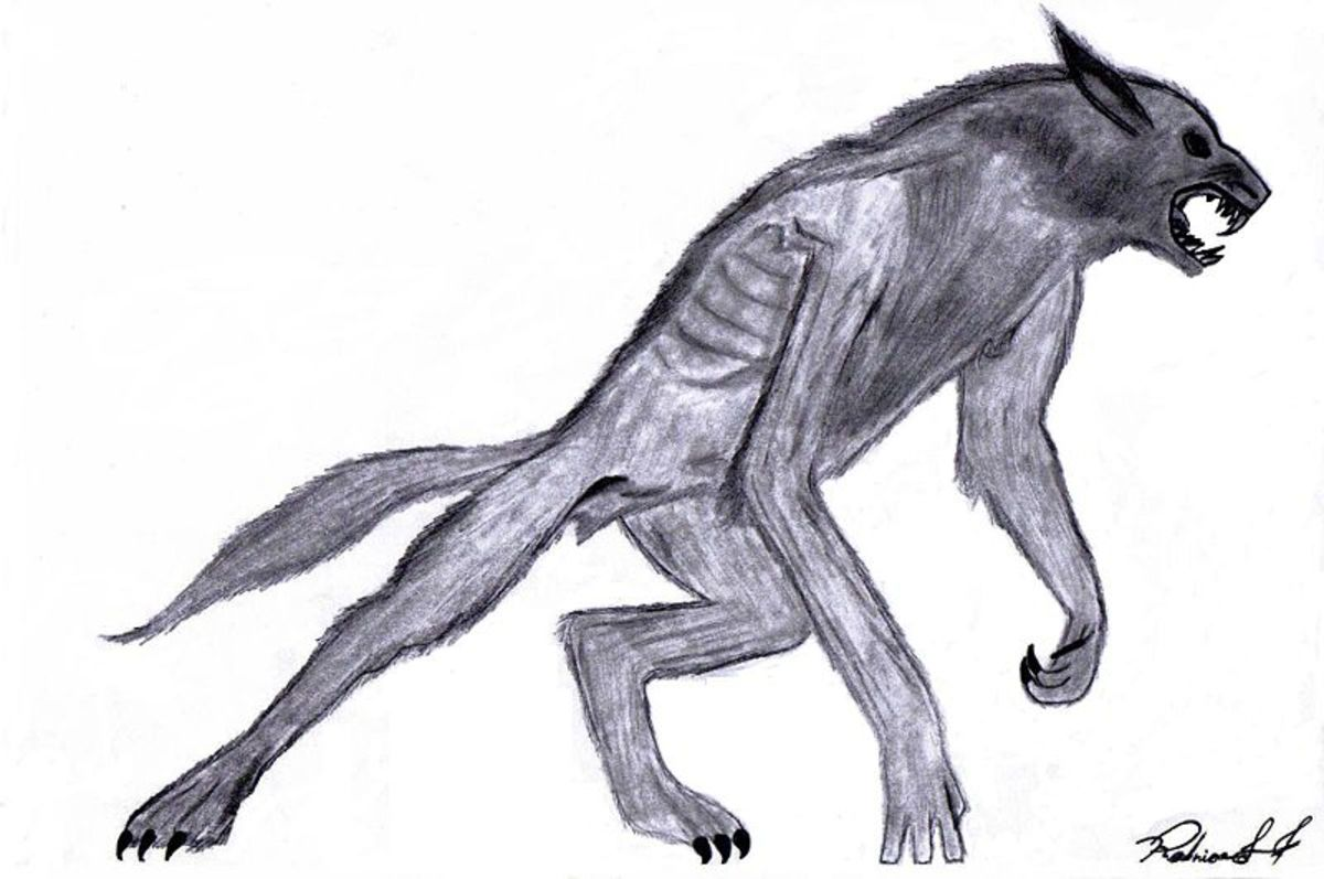 Some people have magical animals, like the werewolf, for their shadow