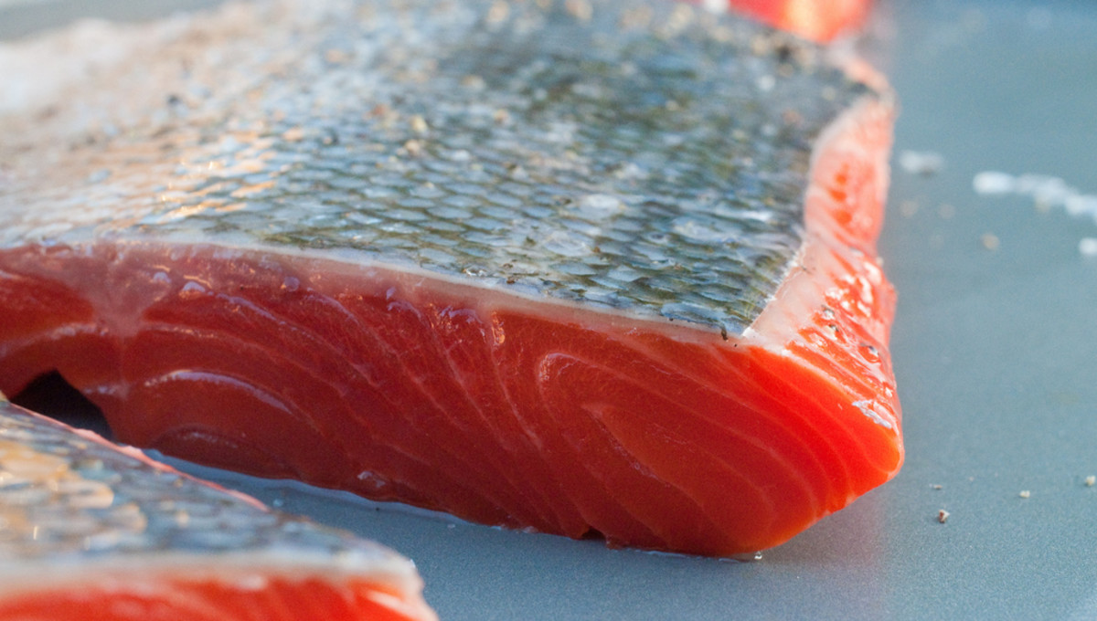 Raw salmon fillets with skin