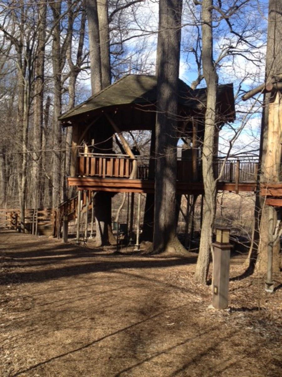 The Birdhouse tree house at Longwood Gardens.
