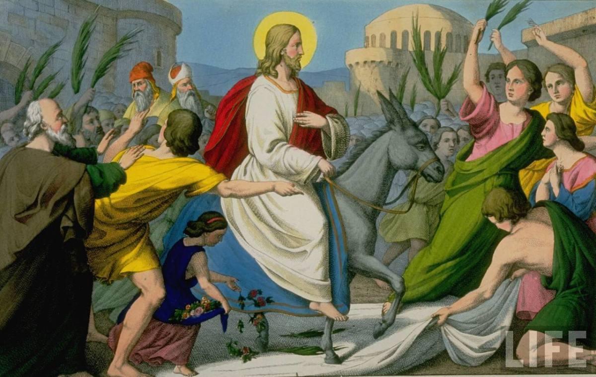 Jesus sitting with Donkey
