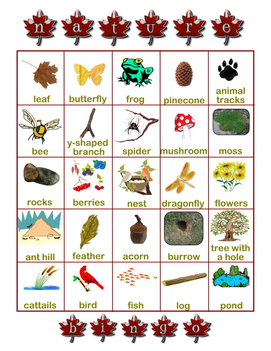Visit the URL below to print out the bingo card