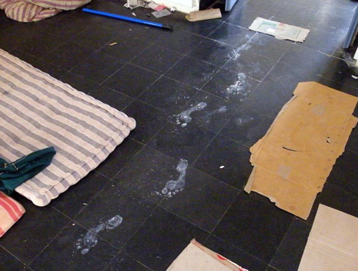 Por la mañana, los voluntarios descubrieron huellas de vibhuti de la entrada de la sala al altar improvisado dentro.