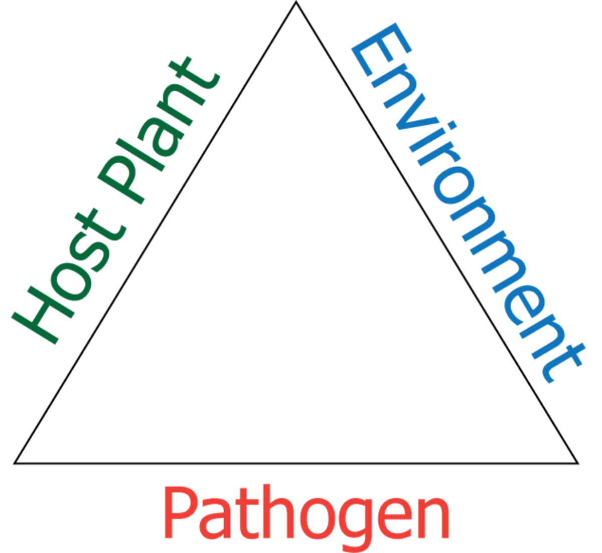 In order for disease to occur, there must be a susceptible plant, a favorable environment and a pathogen (fungus, bacterium, virus, mycoplasma).