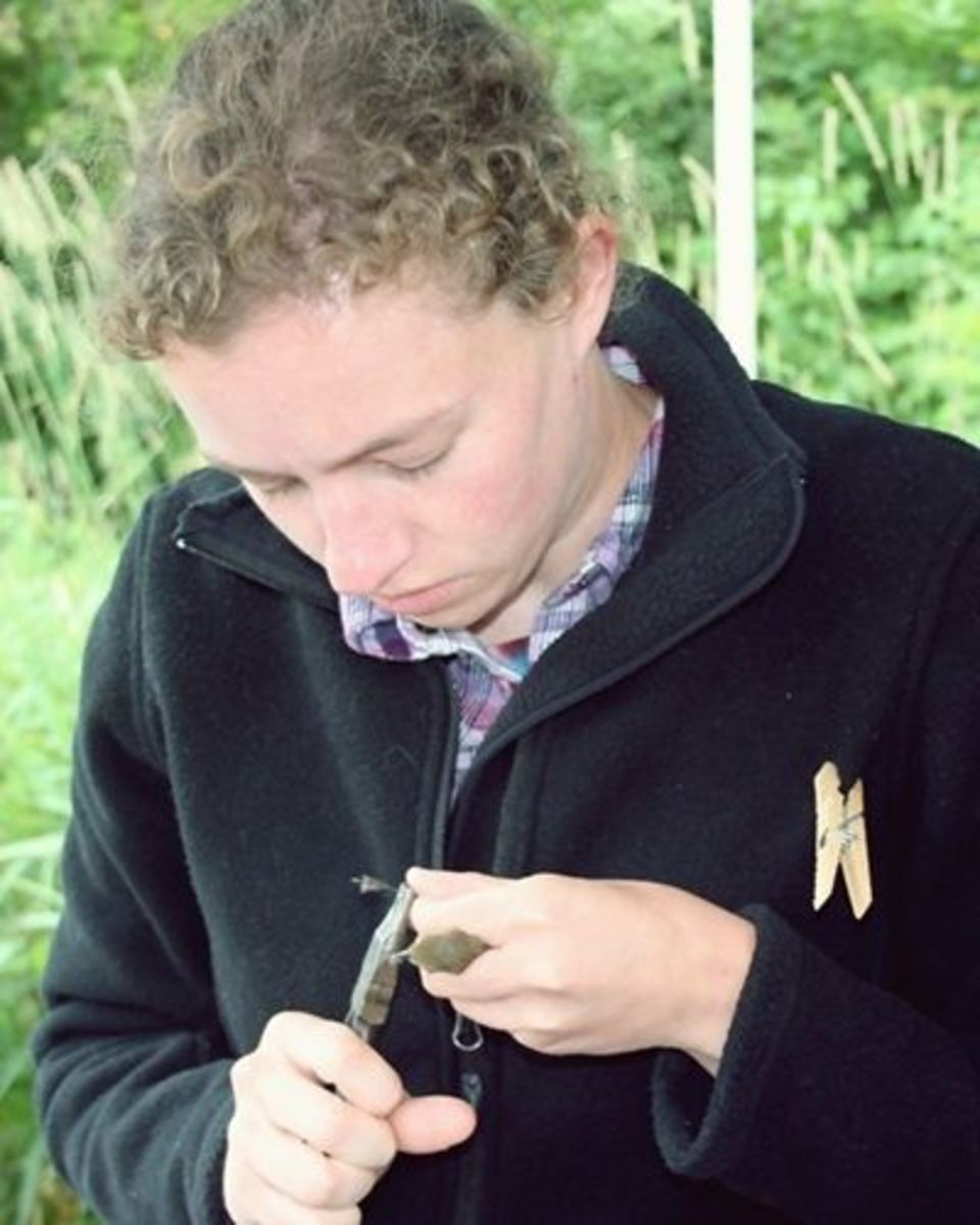 A photo of me banding at a MAPS station this summer