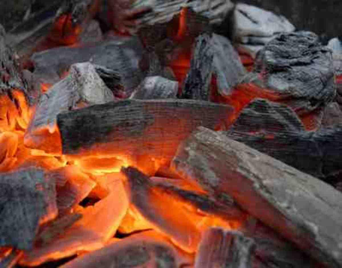 Natural Actived Charcoal charcoalpills.org