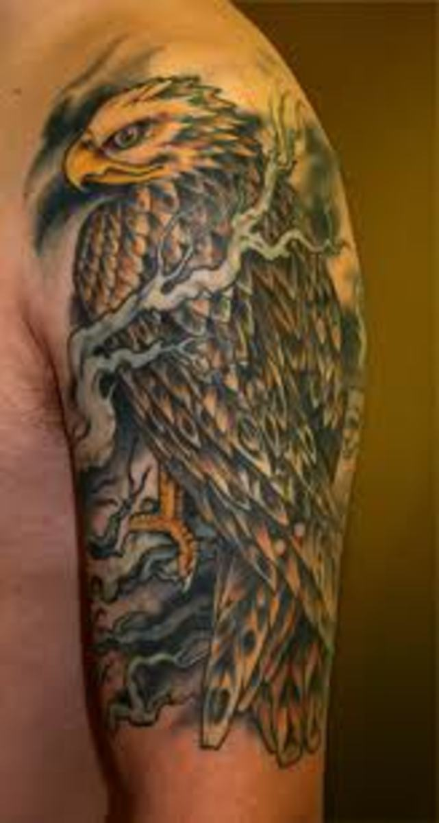 Hawk Tattoos And Meanings-Hawk Tattoo Designs And Ideas-Hawk Tattoo Pictures   HubPages