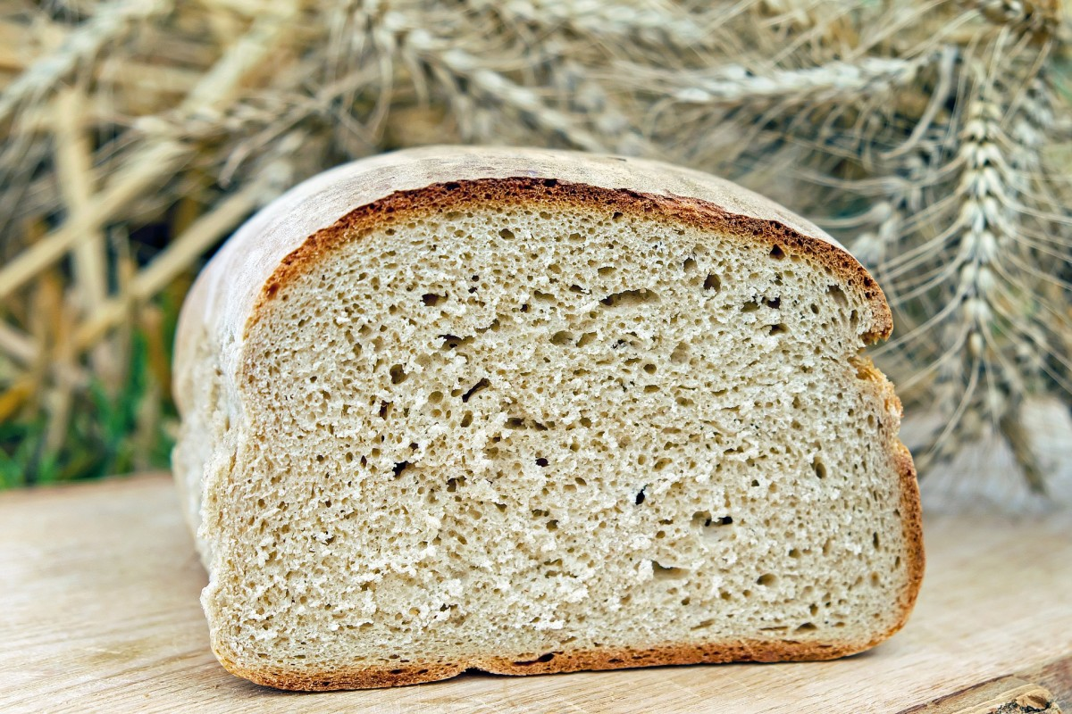 what-is-the-best-bread-maker