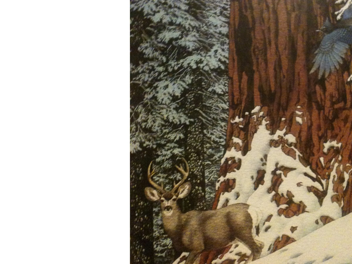 "Detail of ""Broken Silence,"" one of Doolittle's pre-camouflage artworks that is reproduced in ""The Artwork of Bev Doolittle."""