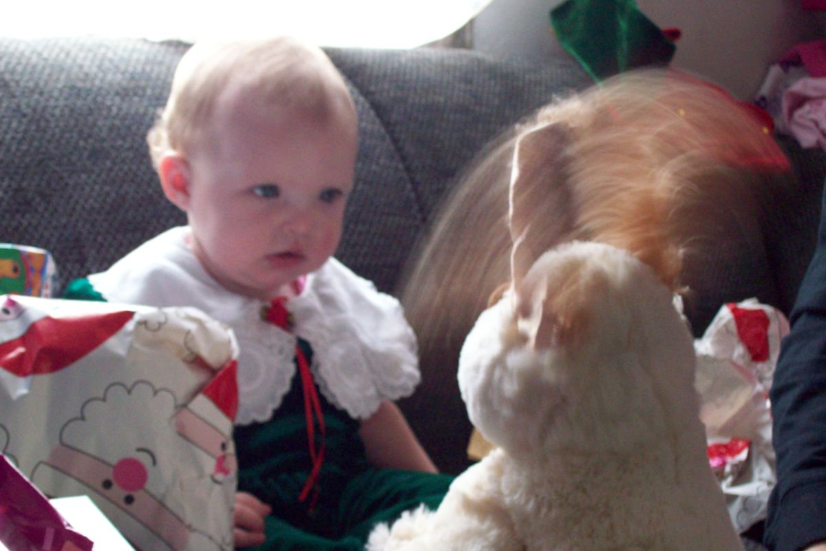 This was taken of my granddaughter Leah's first Christmas in 2010. This serious expression was caught on camera. Cherished memories aren't always displayed with pictures.