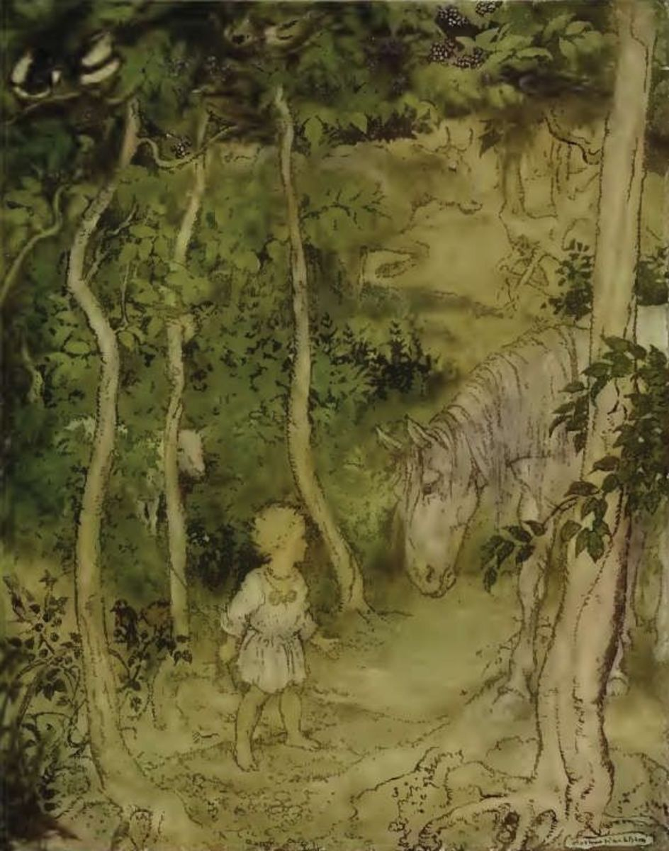 Arthur Rackham: Irish Fairy Tales
