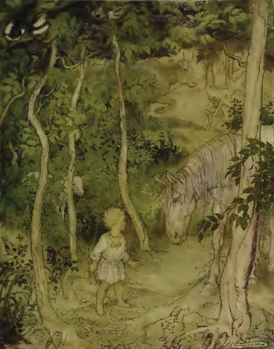 Arthur Rackham: Irish Fairy Tales