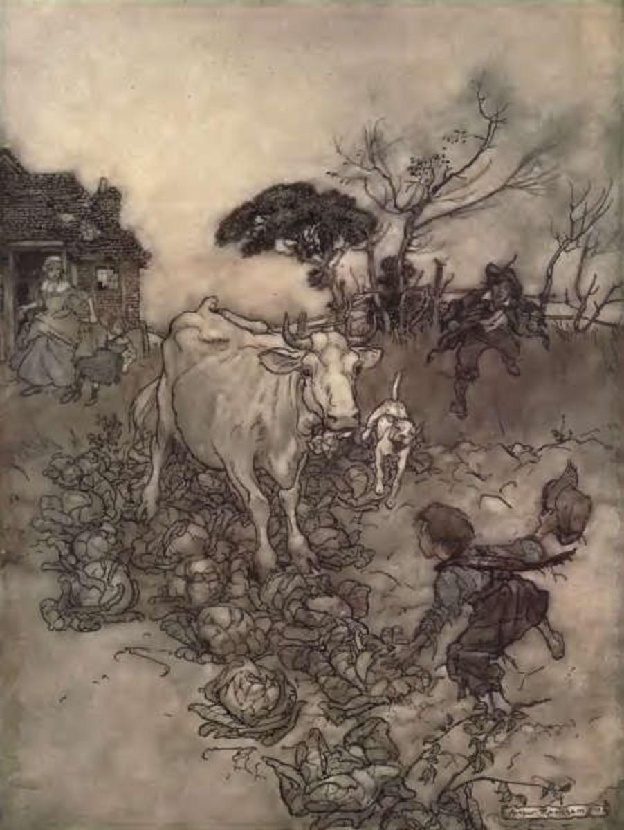 Rip Van Winkle illustrations were his first major success