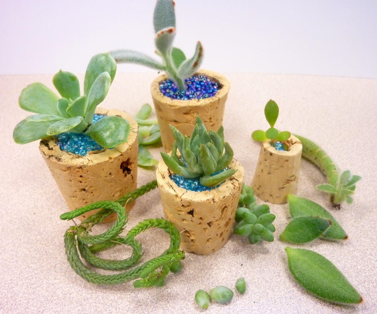 Using a cork, soil, and some seed beads you can create adorable succulent micro planters.