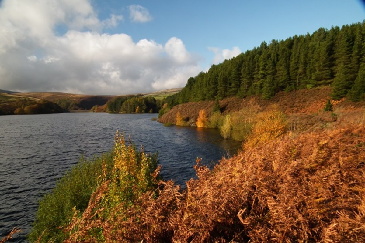 Another aspect of Digley Reservoir above Holmfirth in an autumn setting