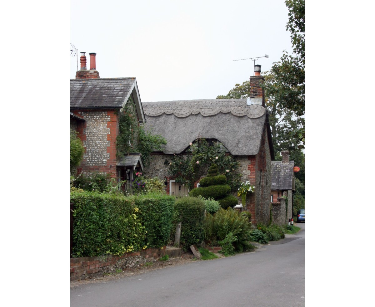 The main village road, lined by thatched cottages with climbing roses