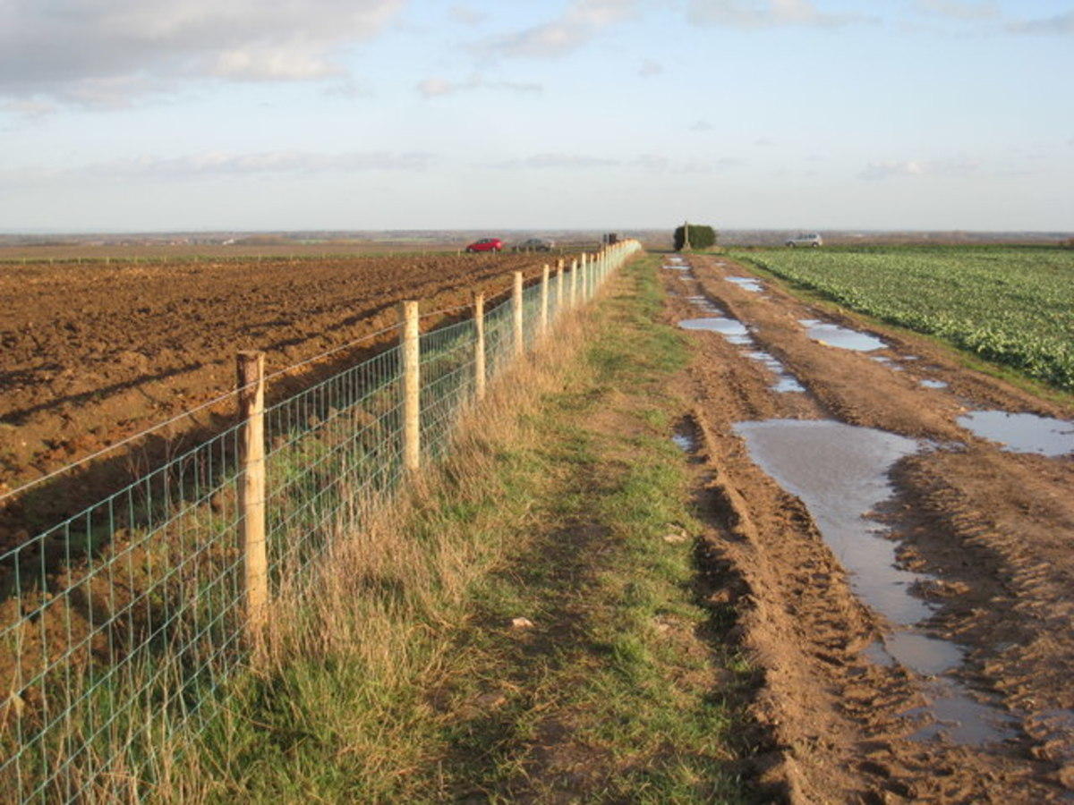 The permissive track alongside the battlefield - remember if you go there to observe the country code and treat the land with respect. It's a working environment