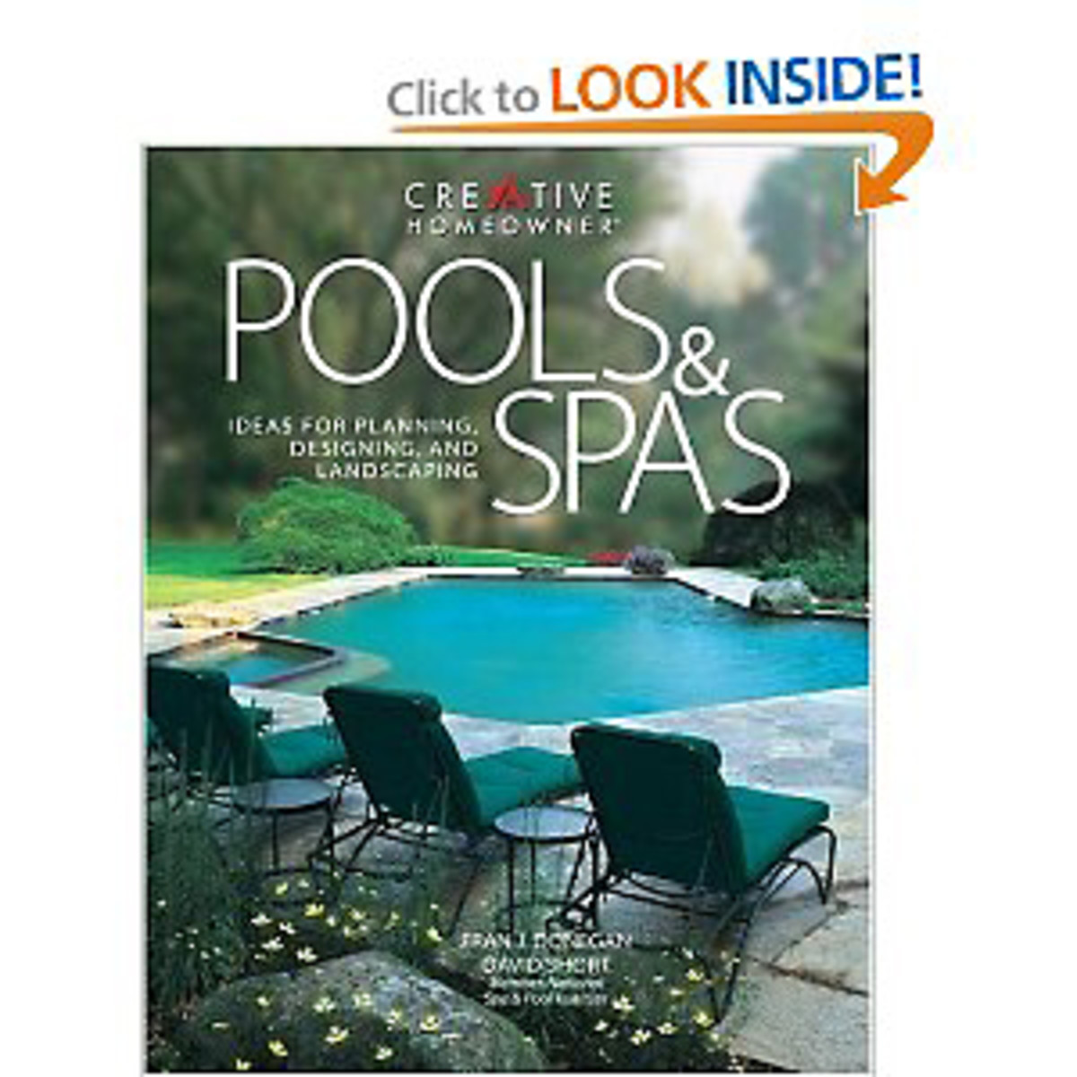 Swimming pool spa pool design books hubpages for Pool design books