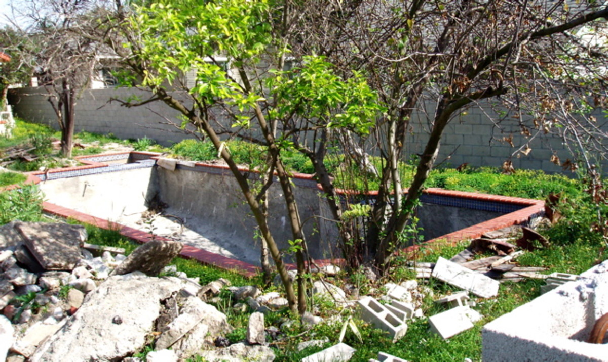 Small backyard pool under construction. After the pool is built, the owner will work with the landscape around it.