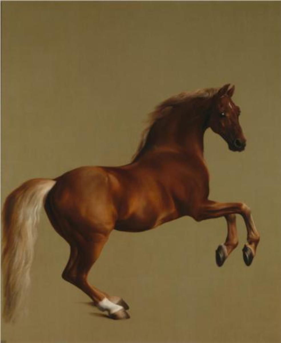 """""""Whistlejacket"""" by George Stubbs (1724-1806), currently on display at the National Gallery in London."""