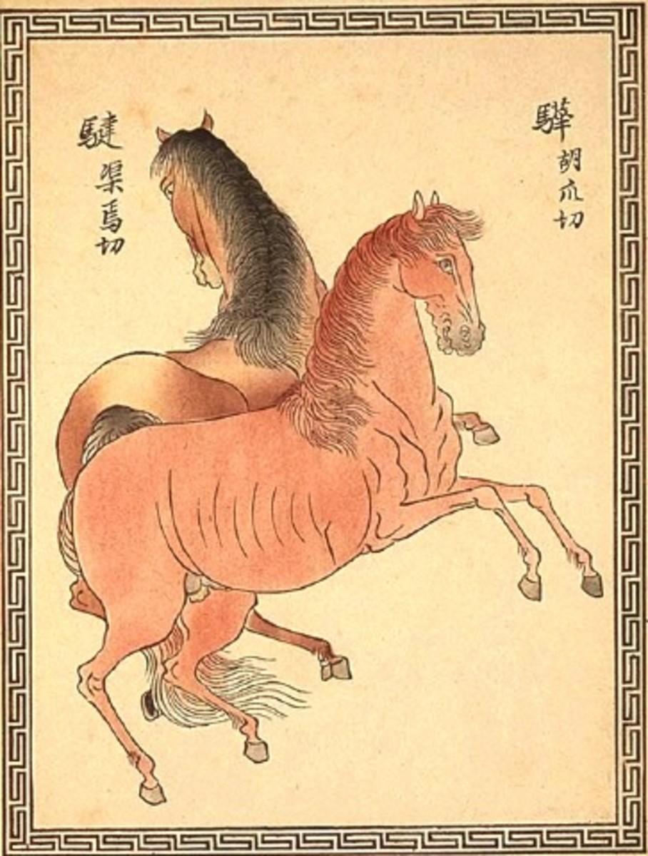 """Uma horse"" by 18th century Japanese artist Asahiyama Hirasawa."