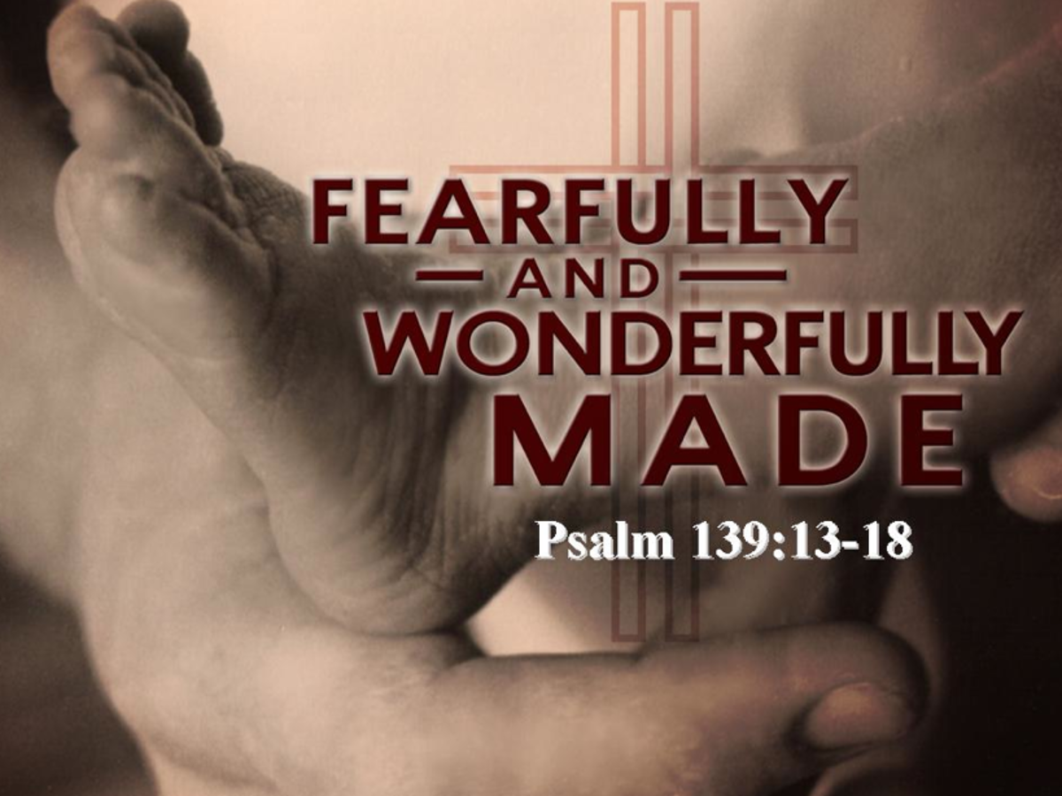 I Was Fearfully and Wonderfully Made