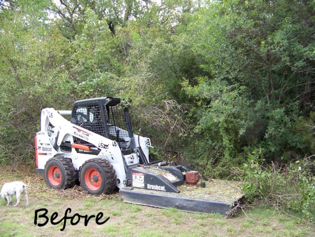 Before photo of bobcat work