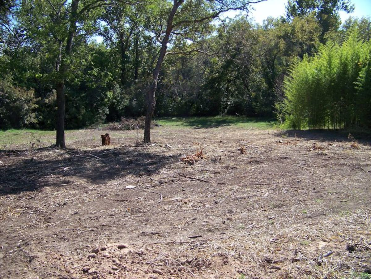 After photo of bobcat work