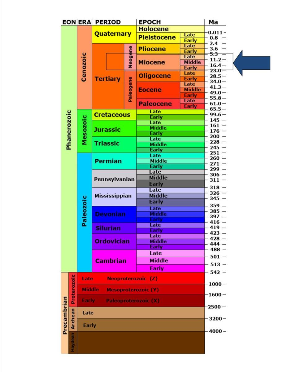 Geologic time scale covering the Precambrian and Phanerozoic eons with detail down to the epoch.