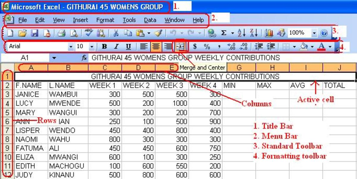 Performing Calculations in Microsoft Office Excel 2003