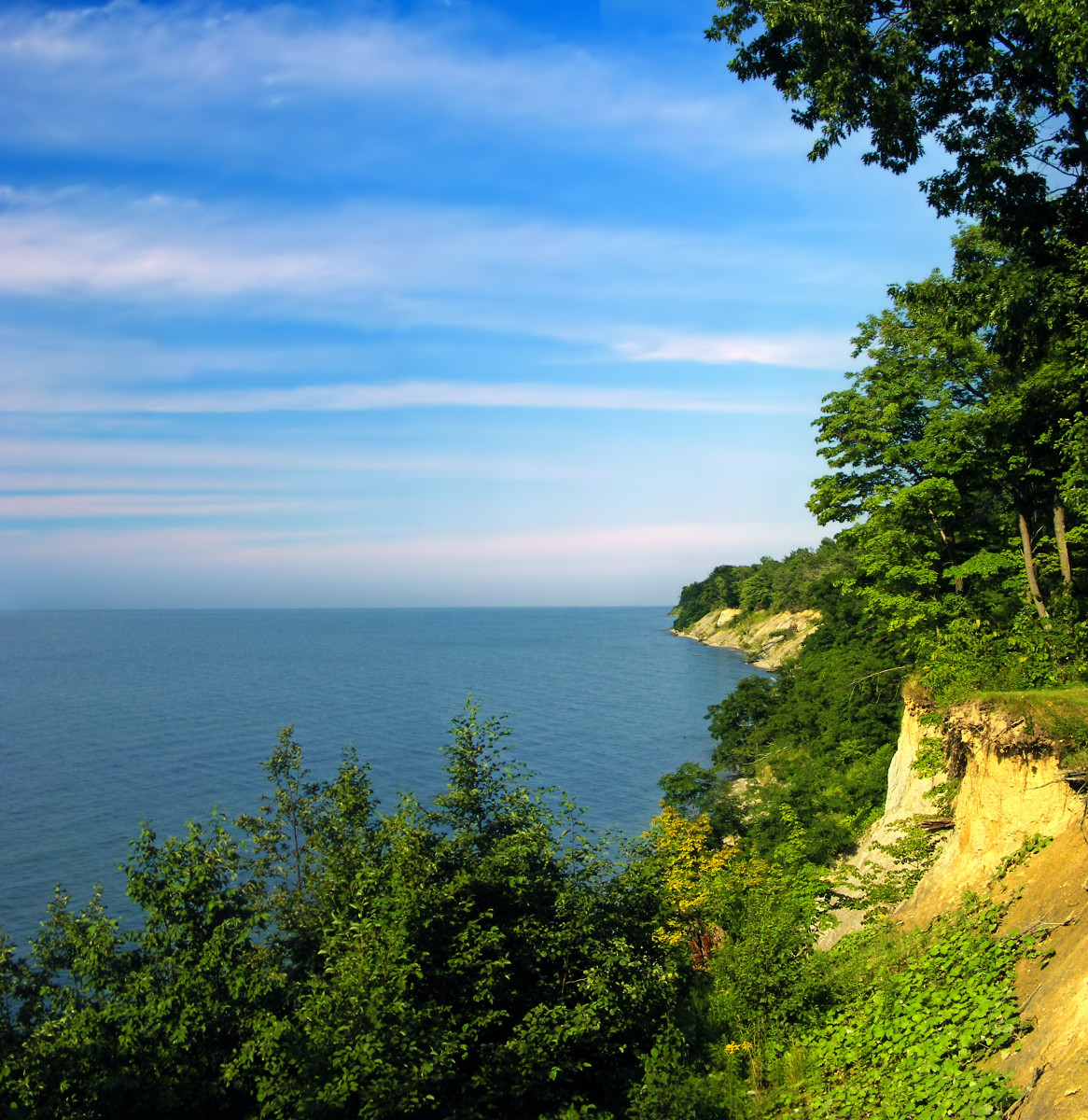 Lake Erie bluffs, David M. Roderick Wildlife Reserve, Erie County, Pennsylvania.