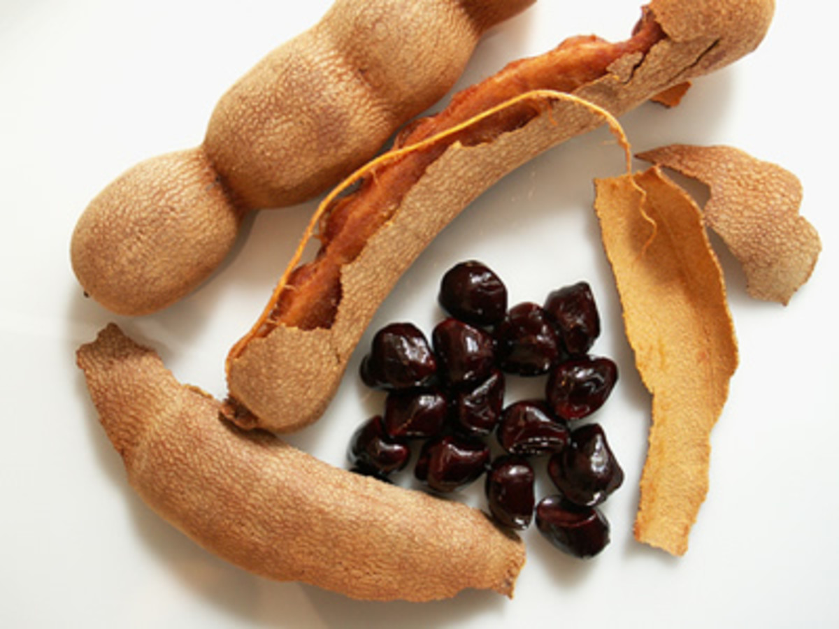 Health Benefits and Side Effects of Tamarind