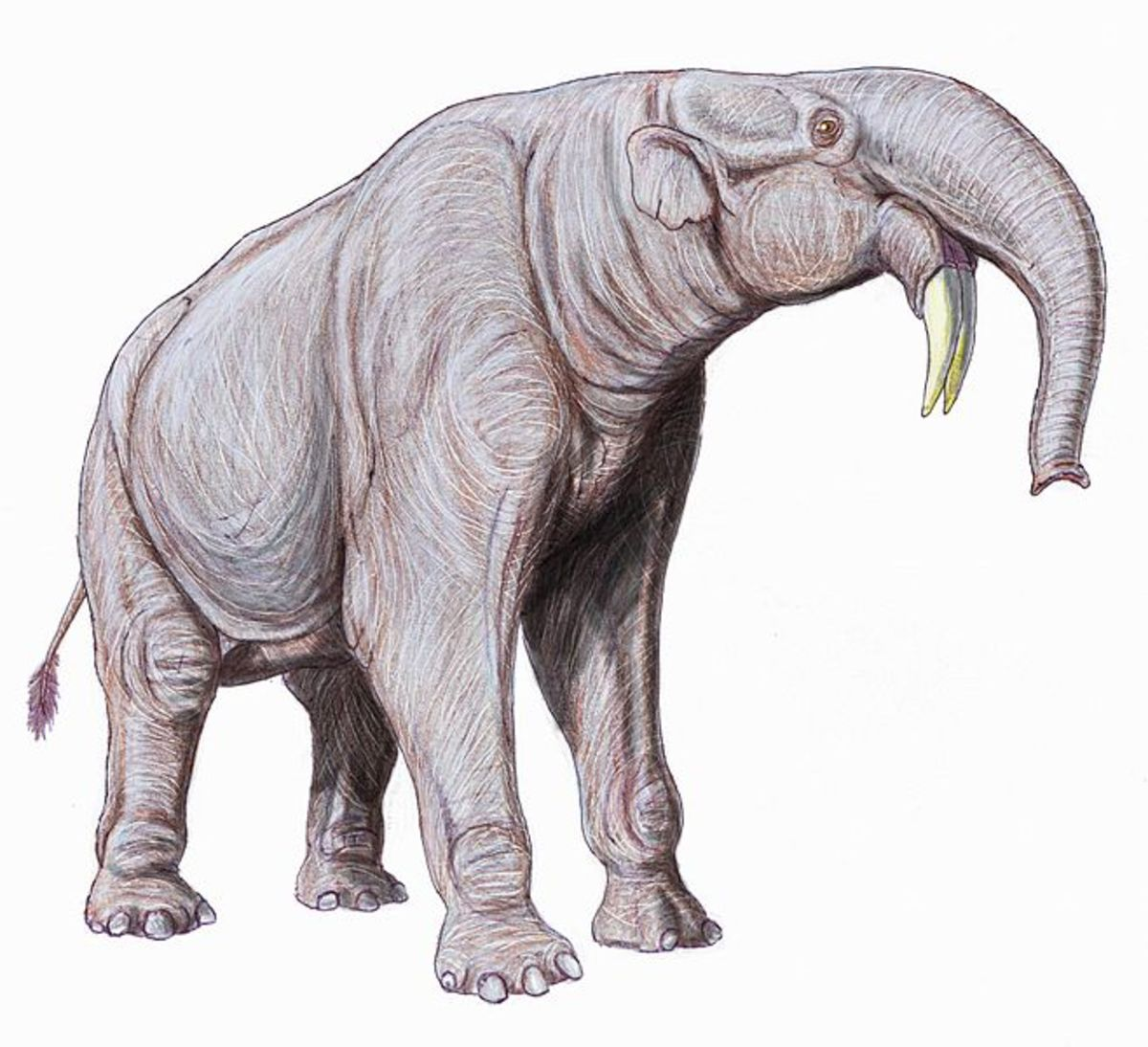 Deinotherium was an ancient relative of modern elephants.