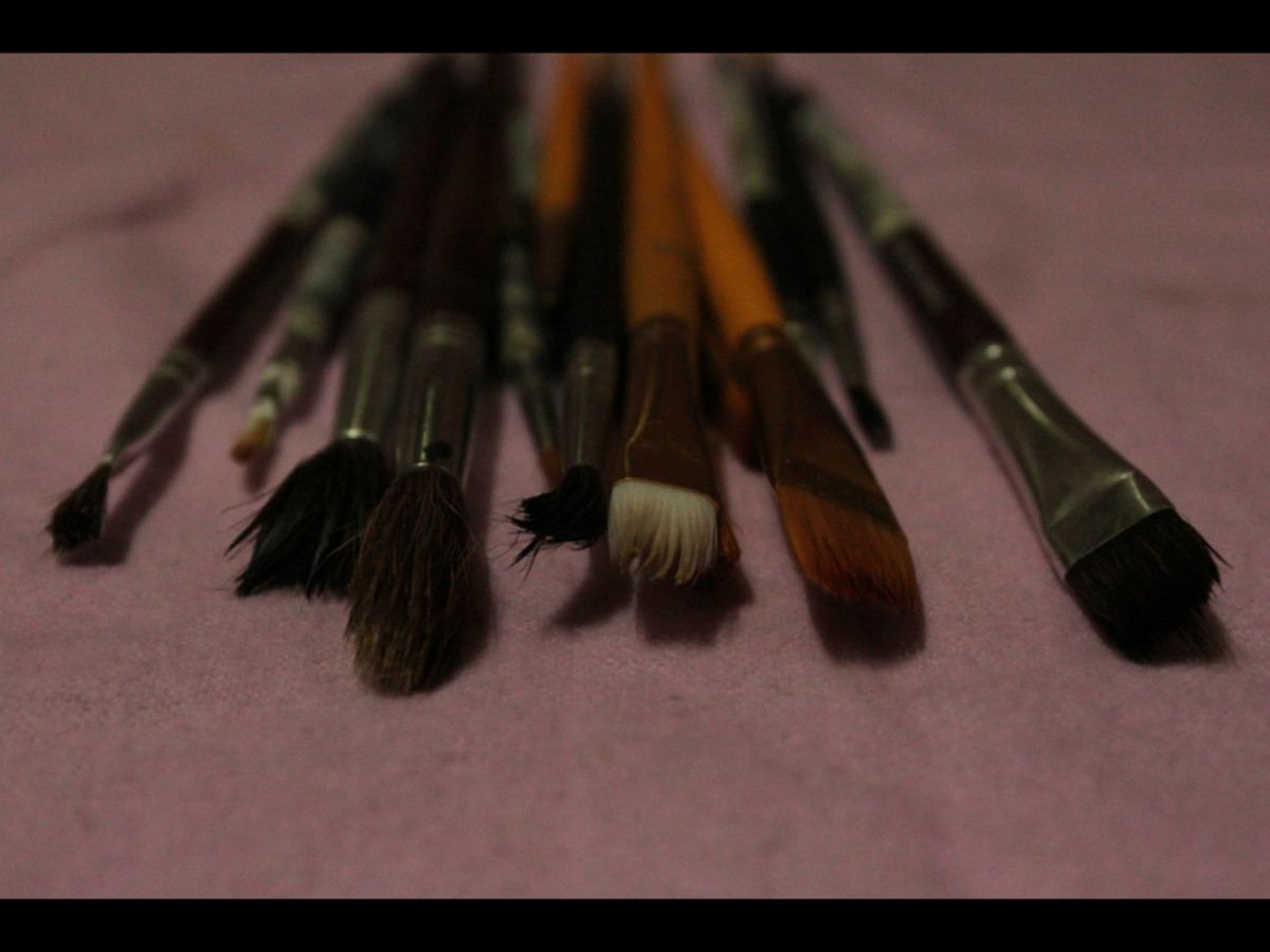 brushes (use soft brushes) in different sizes