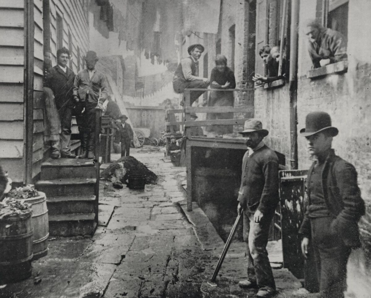 Science, Art, or Brutality: What Is The American Fighting Form?