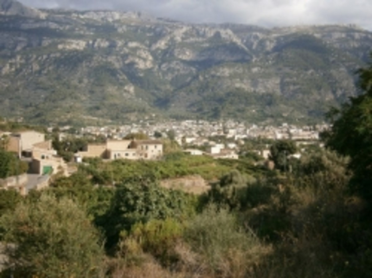 The town of Soller