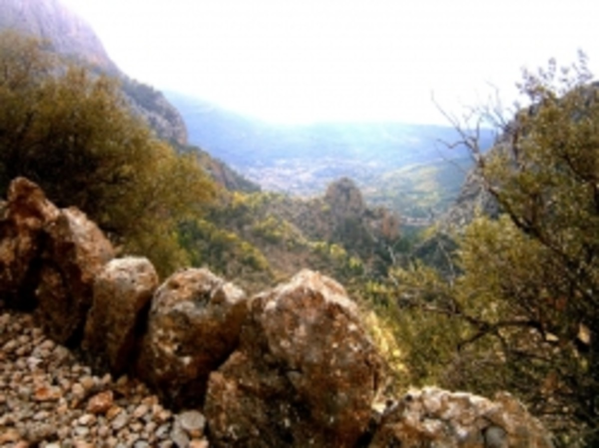 The Barranc in Soller